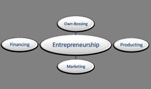 web - sistem & entrepreneur