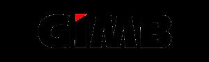 GIMB Logo T